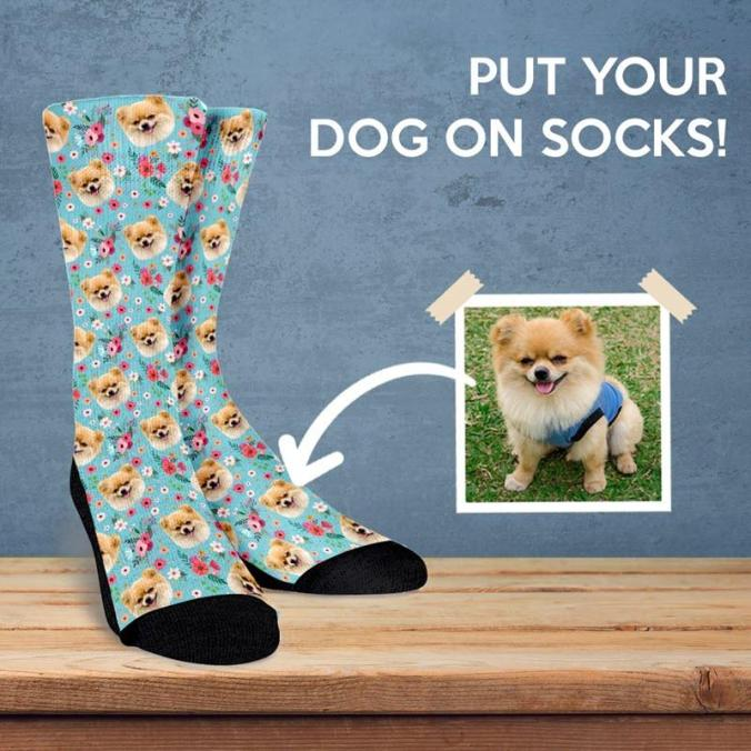 Custom_Dog_Socks